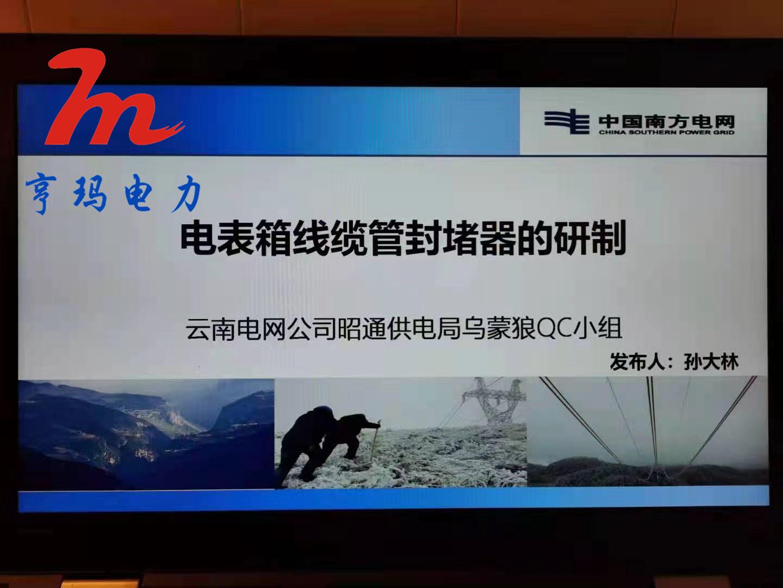 祝贺表箱封堵器成功载入中国南方电网平台