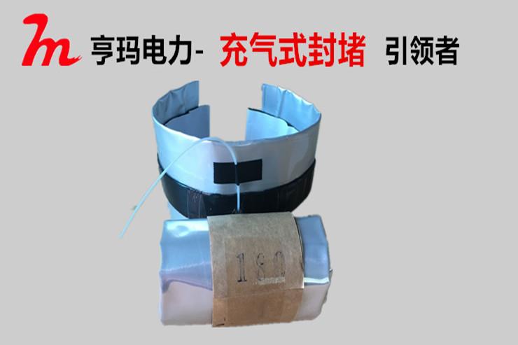 充气式管道密封器的有效应用不受环境限制
